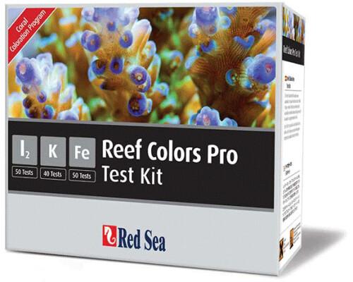 Red Sea Reef Colors